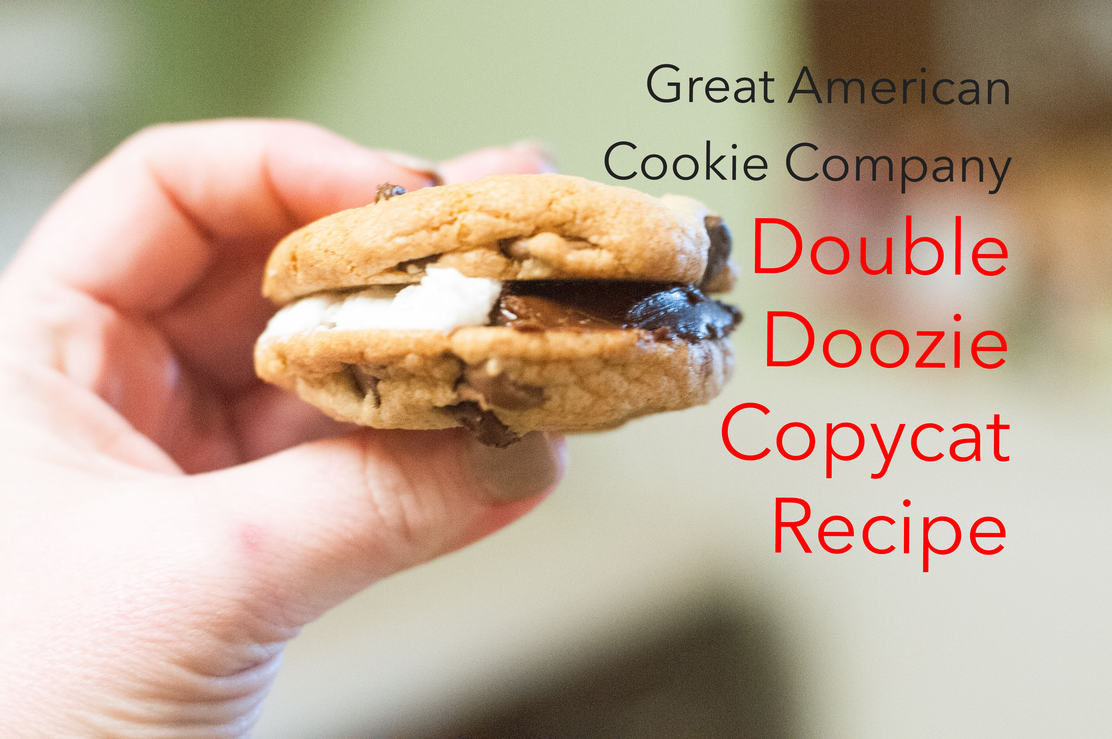 Best Chocolate Chip Cookies Ever Homemade Double Doozies